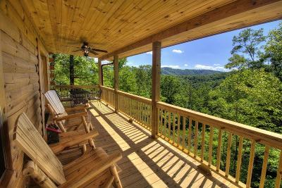 Bryson City Single Family Home For Sale: 266 Fred Breedlove Road