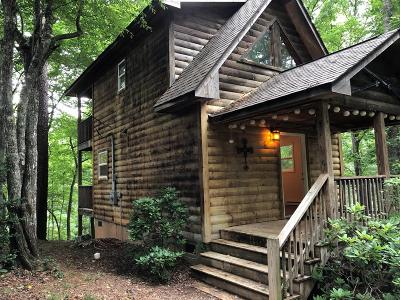 Jackson County Single Family Home For Sale: 196 Conifer Drive