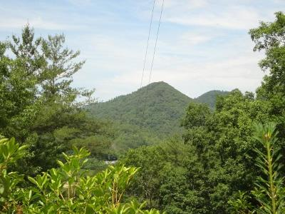 Otto Residential Lots & Land For Sale: 00 Dover Knob Trace