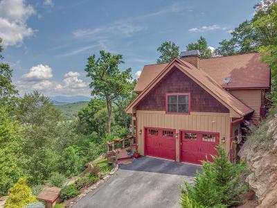 Single Family Home For Sale: 745 Scutter Lane