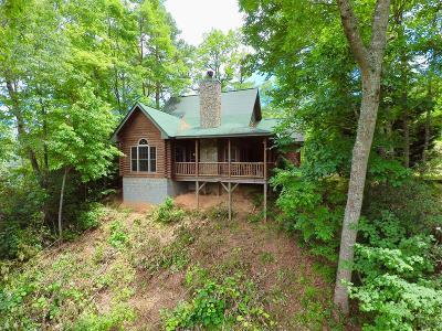 Bryson City Single Family Home For Sale: 225 Magnolia Lane