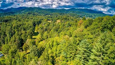 Franklin Residential Lots & Land For Sale: 00 Peace Valley Lane