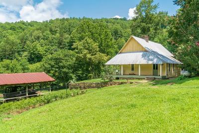 Bryson City Single Family Home For Sale: 27 Grady Estep Rd