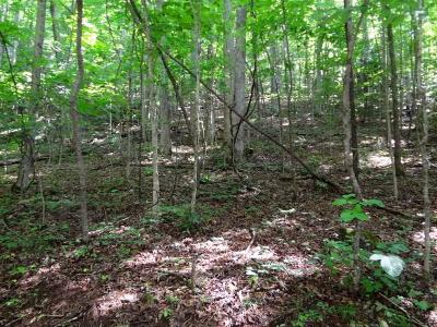 Otto Residential Lots & Land For Sale: 00 Crestview Drive