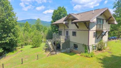 Franklin Single Family Home For Sale: 715 Bailey Road