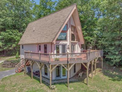 Otto Single Family Home For Sale: 187 Blueberry Hill Road