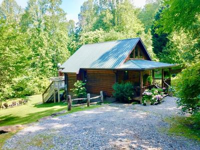 Bryson City Single Family Home For Sale: 230 Lower Creek Crossing Road