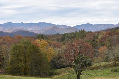 Franklin, Otto Residential Lots & Land For Sale: 2000 Leatherman Gap Rd
