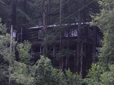 Bryson City Single Family Home For Sale: 945 East Silvermine Rd
