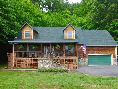 Sylva Single Family Home For Sale: 138 Sandbrook