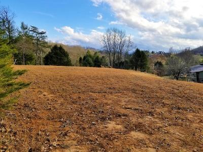 Macon County Residential Lots & Land For Sale: 25 Evergreen Lane