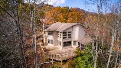 Bryson City Single Family Home For Sale: 425 Turkey Run