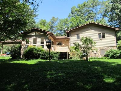 Franklin Single Family Home For Sale: 240 Morrison Church Rd.