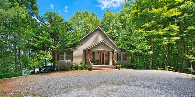 Franklin Single Family Home For Sale: 175 Black Gap Road
