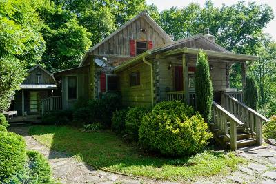 Bryson City Single Family Home For Sale: 530 Bee Branch