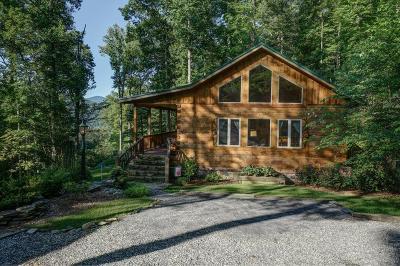 Bryson City Single Family Home For Sale: 29 Towalgia Dr.