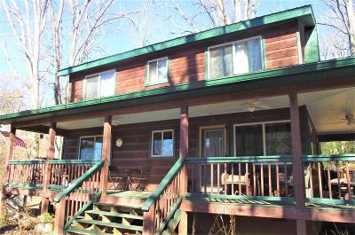 Jackson County Single Family Home For Sale: 297 Dam Rd