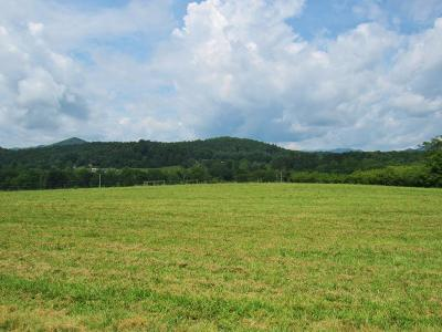 Franklin, Otto Residential Lots & Land For Sale: 000 Clarks Chapel Road
