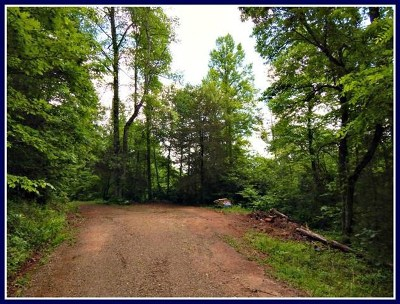 Franklin, Otto Residential Lots & Land For Sale: Lot #8 Santeetlah Ridge