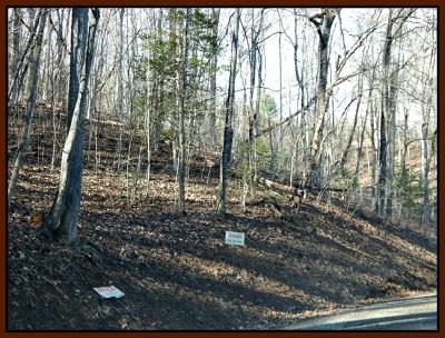 Trimont Mountain Estates, Trimont Mtn Estates, Trimont Mtn. Estates Residential Lots & Land For Sale: Lot 54 Flaming Azalea Rd.