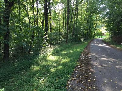 Franklin, Otto Residential Lots & Land For Sale: 00 Jacobs St Lot 10