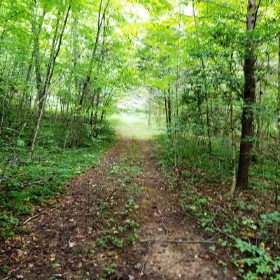 Macon County Residential Lots & Land For Sale: 00 Bentoak Drive