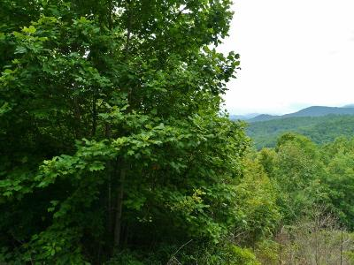 Trimont Mountain Estates, Trimont Mtn Estates, Trimont Mtn. Estates Residential Lots & Land For Sale: 00 Woodland Heights