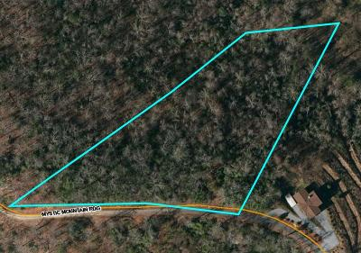 Macon County Residential Lots & Land For Sale: 00 Mystic Mountain Ridge Road