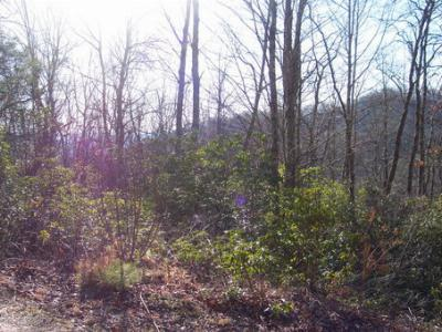 Macon County Residential Lots & Land For Sale: Mountain Laurel Drive