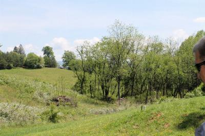 Franklin, Otto Residential Lots & Land For Sale: Lot 3 Lyle Street