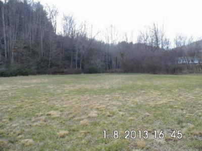 Pasture Land, Creek Front and Mountain Views
