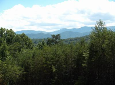 Franklin, Otto Residential Lots & Land For Sale: Dowdle Mountain Road