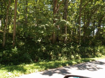 Franklin, Otto Residential Lots & Land For Sale: N/A Dowdle Mountain Road