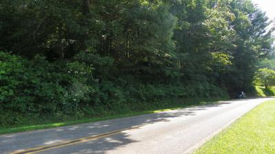 Franklin Residential Lots & Land For Sale: 00 Wide Horizon Drive