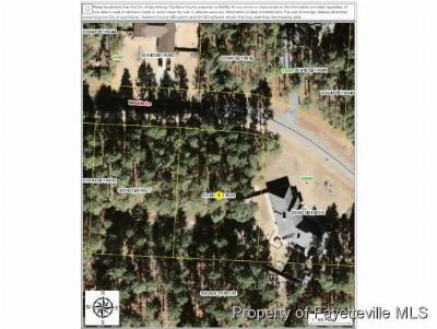 Wagram Residential Lots & Land For Sale: 38 Wildlife Ln