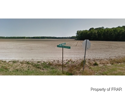 Hoke County Farm For Sale: Pittman Grove Church Road