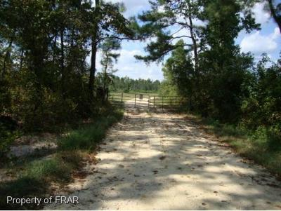 Hoke County Farm For Sale: 4034 Turnpike Road