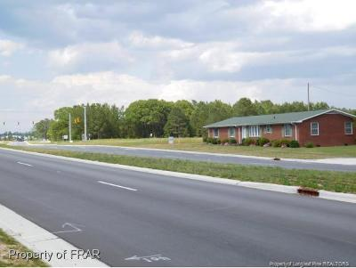Harnett County Commercial For Sale: 2164 Ray Road