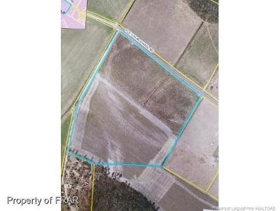 Farm For Sale: Fletch McPhaul Rd