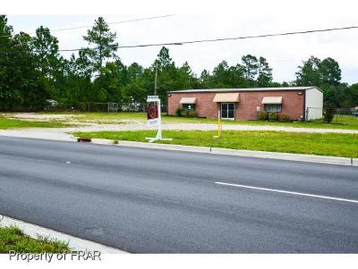 Harnett County Commercial For Sale: 1994 Ray Road