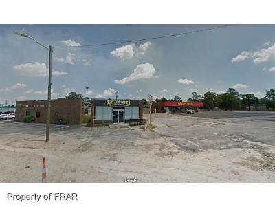 Harnett County Commercial For Sale: 108 Nc 210 Hwy N