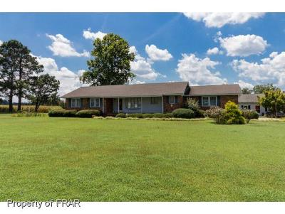 Robeson County Single Family Home For Sale: 1042 Barnes Road