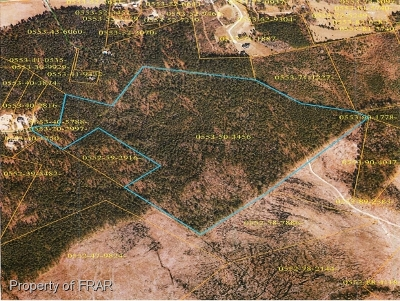 Linden Residential Lots & Land For Sale: McArtans Ford