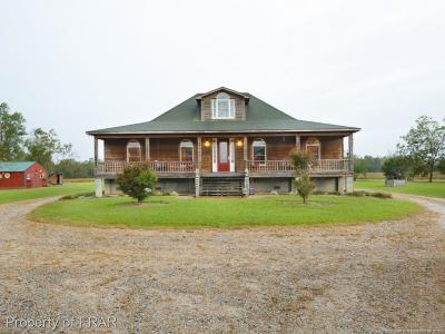 Robeson County Single Family Home For Sale: 2616 Nc Hwy 41