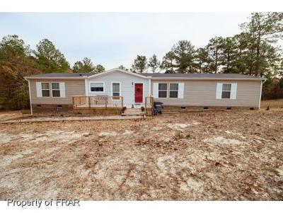 Moore County Single Family Home For Sale: 133 Birch Dr