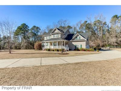 Hoke County Single Family Home For Sale: 4573 Rockfish Rd #1