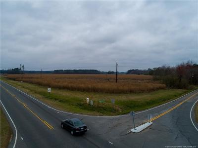 Hoke County Residential Lots & Land For Sale: Wallace McLean Rd/Us Highway 401 Highway