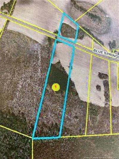 Red Springs Residential Lots & Land For Sale: Blue Springs 8 Road