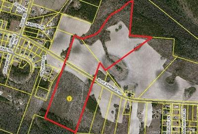 Raeford Farm For Sale: Blue Springs Road