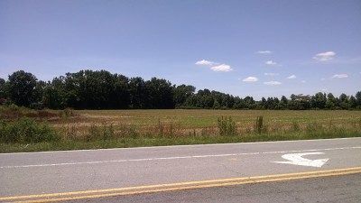 Mt Olive Residential Lots & Land For Sale: 1295 Breazeale Ave